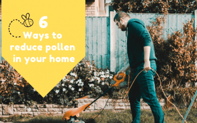 6 Ways to Reduce Pollen in Your Home