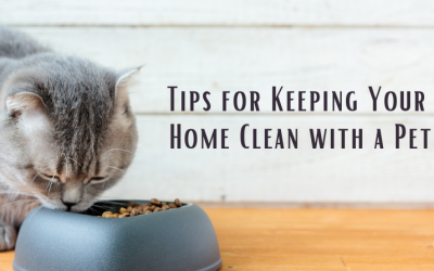Tips for Keeping Your Home Clean with a Pet